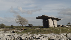 Poulnabrone portal tomb 3 (diffendale) Tags: ireland irish archaeology megalithic monument grave stone architecture eire burial ritual prehistoric karst capstone cairn bronzeage stoneage neolithic megalith dolmen prehistory poulnabrone portaltomb pollnambrn 4thmillenniumbce portalstones pleiades:depicts=406501931 37thcbce 38thcbce