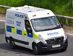 KP62HXX (Cobalt271) Tags: dog proud police northumbria vehicle to protect vauxhall swb livery movano kp62hxx l1h2