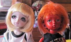 Sofia makes a new friend. (JinxKloe) Tags: red purple yami soon 5star yosd trachy
