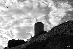 Sobrevolando la torre (ZAP.M) Tags: bw espaa andaluca nikon flickr playa paisaje cielos cdiz chiclana nwn labarrosa nikond60 zapm mpazdelcerro