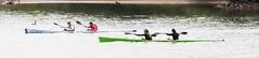 AmericanRiver30May 21, 2016.jpg (kopperlben) Tags: americanriver americanriverparkway folsom negrobar northamerica unitedstatescalifornia kayaking rivers sports water watersports orangevale california unitedstates