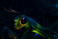 _DSC9502_2 (Elii D.) Tags: light fish flower animal night zoo monkey neon dragons lantern lampion dargon