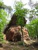 Instameet au Pays de Bitche - Mai 2016 (Valerie Hukalo) Tags: france nature sandstone lorraine forêt vosges grèsrose vosgesdunord paysdebitche massifdesvosges hukalo valériehukalo instameet enjoymoselle enjoypaysdebitche imbitche01