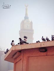 (ميـسـآء بنت عبـدالـلـﮧ ツ) Tags: canon photo flickr cam الله maisa الحرم عبدالله بنت صوره مكه ساعة 600d فلكر اكبر حمام كام كاميرا كانون ميساء المصوره