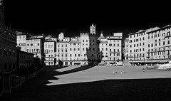 """Lights and shadows"" - Siena Piazza del Campo (Penso che in grande sia migliore - I think that in great format is better!) (pigianca) Tags: people bw italy architecture contrast buildings nikon italia shadows gente bn ombre tuscany desaturation streetphoto siena nikkor toscana architettura biancoenero piazzadelcampo palazzi urbanphoto candidphoto contrasto desaturazione d700 nikond700 nikko424mmf14"