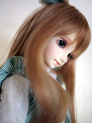 (rarapipo) Tags: bjd shoyo dollzone