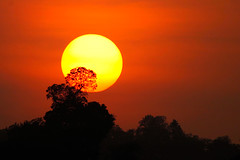 Sunset @ Kabini (VinothChandar) Tags: trees light sunset orange sun india beautiful beauty silhouette forest canon landscape photography photo glow photos pics picture pic jungle 5d karnataka kabini