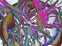 Potted plant 2 (sirhowardlee) Tags: homes white plant abstract blanco gardens gardening digitalart soil pottedplants round pottery botany casas horticulture jardines planting potted