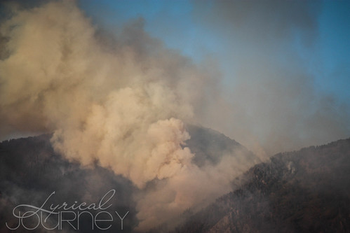 Alpine Quail Fire (22 of 33)