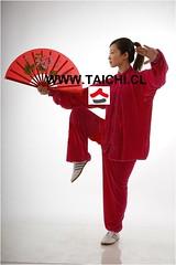 TAICHI      www.taichi.cl