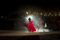 Horse Flamenco (garrettpalm) Tags: spain seville flamenco horsedance