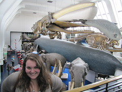 Alyssa at Hall of Mammals (maineexile) Tags: london naturalhistorymuseumlondon