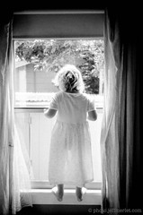 looking by the window, santa cruz, july 2012 [#025710] (Jeff Merlet Photography) Tags: california leica city morning family light portrait bw usa santacruz tree film home girl leaves kids analog 35mm children blackwhite published day child dress pacific 10 curtain sunny indoor negative 400 drape 135 2012 foma rpl fullbody arista leicam6ttl aristaeduultra400 fomapan400 summicron352 scphoto 201207 richardphotolab journeyofanorcalfamily jeffmerletphotography photojeffmerletcom r0257 rpl2026 025710