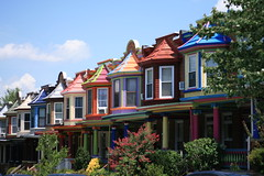 the painted ladies of Charles Village (rustoleumlove) Tags: houses colors contrast paint jobs baltimore schemes juxtapose combination combo