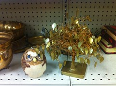 thrift treasures (irene_joy) Tags: tree treasure indianapolis indiana thrift owl goodwill