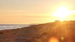 Sunrise at Nykbing (F. Ewald) Tags: sea summer beach strand sunrise denmark see coast meer sommer balticsea sealand dnemark danmark sonnenaufgang kste nykbing sjlland seeland odsherred