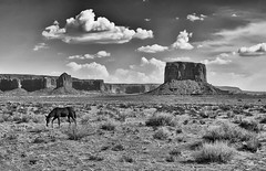 Timeless Monument Valley (Jeff Clow) Tags: arizona landscape western monumentvalley theoldwest tpslandscape