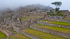 Machu Picchu-112