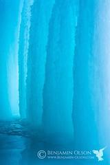 Waterfall Blues (www.benjamin-olson.com) Tags: blue winter abstract cold ice nature minnesota frozen waterfall natural minneapolis icy mn minnehaha subzero minnehahafalls