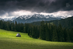 The woods are lovely, dark and deep... (Motographer) Tags: bukowinatatrazaka lesserpolandvoivodeship poland europe carpathianmountains tatra mountains cabin forest rain clouds zakopane slovakia light trees snow spring flowers grass fields green landscape nikon d750 nikkorafs50mmf18g 50mm nature centraleasterneurope cee fotografikartz kartz motographer