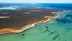 Shark Bay WA -  DSC3178