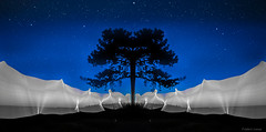 Night Shape (tOntOnfred LP) Tags: blue light lightpainting france night painting hour heure bleue
