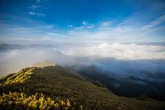 -16 (billlushana1) Tags: travel cloud mountain flower tree sony taiwan hike peaks  taroko tw  tarokonationalpark hehuanshan    mountain 100peaksoftaiwan taiwantop100peaks sonya7r
