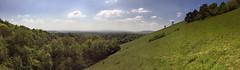 Colley Hill Reigate, Surrey - National Trust (pg tips2) Tags: england green grass woodland landscape view nt pano surrey land southeast northdowns boxhill pleasant leithhill reigate colleyhill englishscenery reigatehill chalkdownland greenpleasantland