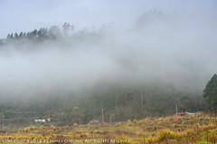 JD9_9646 (james album) Tags:   taiwan taichung travel travelpic    wulingfarm  fog landscape