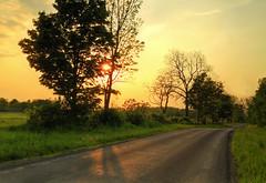 (no) Noise (Matt Champlin) Tags: life trees sunset summer rural canon warm weekend country warmth cny upstatenewyork sunburst noise tgif countryroad memorialday kennychesney unwind sunstar 2016 mastersroad
