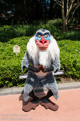 Rafiki (Disney Dan) Tags: travel vacation usa america spring orlando epcot unitedstates florida character unitedstatesofamerica may disney mai disneyworld northamerica characters fl wdw waltdisneyworld epcotcenter rafiki thelionking worldshowcase 2016 disneycharacters disneycharacter americanadventure disneypictures theamericanadventure disneyparks disneypics lionkingmovie