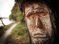 Ghost in the Tree (koratien) Tags: wood trees nature outdoor natur carving baum ingolstadt eisenerz