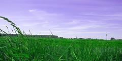 FA_020 (Dutch_Chewbacca) Tags: green nature netherlands dutch spring fort sunny dijk defense brabant forts 1877 landschap 1880 waterlinie nieuwe 1847 altena brabants bunkers hollandse uppel gantel uppelse schanswiel