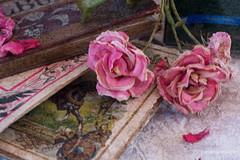 Bodegón. (Marisa y Angel) Tags: roses stilllife texture books bodegón libros rosas texturas tabletop textured naturemorte 2016 alcañiz