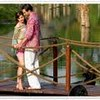 Kerala the Most Executive Honeymoon Destination in India