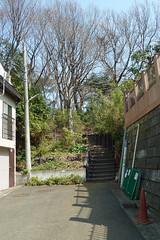 熊野神社市民の森(長命通り入口)(Chomei ave. Entrance, Kumano Shrine Community Woods)