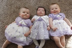 Easter babies (Kerrie Lynn Photography (Sugaree_GD)) Tags: girls baby cute easter photography twins babies purple 7 dresses newborn months infants sugareegd kerrielynn