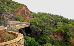 Along Diamond Head Road (jcc55883) Tags: bridge hawaii flora nikon waikiki oahu yabbadabbadoo d40 kaalawaibeach nikond40 diamondheadroad kuileicliffs
