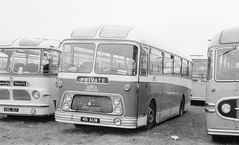 Birch Reliance out to grass. (steve vallance coach and bus) Tags: willowbrook aecreliance birchbros 46auw