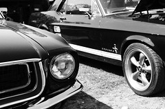 Ford Mustangs (Ahd257) Tags: auto old bw black ford beauty car us blackwhite cool raw alt fast olympus brunswick beautys oldtimer mustang rocknroll fordmustang blackbeauty rockandroll braunschweig ipad schwarzweis uscar uscars xz1 olympusxz1 snapseed