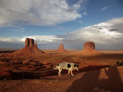 The Mittens, Merrick Butte, and a dog....and our shadows. :0) () Tags: monumentvalley navajotribalpark themittens merrickbutte acutedog wildreservationdog nicebutavoidedpeople