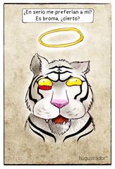 Tigre Blanco (hugustrador ( Ilustraciones con olor a pan tostado) Tags: angel lol alma tiger humor fantasma noticia ngel tigreblanco tigerwhite zoolgicosantiago