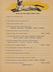 Page 14 (The Cardboard America Archives) Tags: cats vintage book lets kittens abc 1964 discover