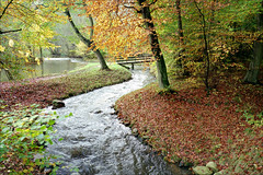 Autumn river (Richard Sir) Tags: bridge autumn film leaves analog zeiss 35mm river landscapes stream 28mm rangefinder contax g2 aarhus carlzeiss contaxg2 fujisuperia200 biogon g28 goldenleaves zeissbiogon28mmf28 skovmllen