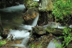 Relax (Antnio Sardinha) Tags: portugal gua aveiro cabreia severdovouga silvaescura