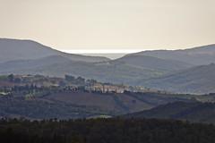 _MG_8758 (candido33) Tags: italy verde italia nuvole natura cielo tuscany toscana vigne colline maremma siloe viti montecucco paesaggidelvino maremmatoscana sassodombrone stradadelvinomontecucco poggidelsassocinigianogr