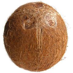 Kokosnoot (Asian Ingredients) Tags: coconut coco coconutflakes kokosnoot shreddedcoconut kopra asianingredients gerasptekokos aziatischeingredientennl aziatischeingredinten kokosrasp gedroogdekokos gemalenkokos kokosvlokken kokossnippers driedcodonut cocorape kokosnussstreifen