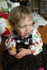 """""""My roll over, too!"""" (quinn.anya) Tags: toddler sam eating apricot"""