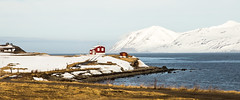 The red house once again. (joningic) Tags: houses red sea house mountain snow mountains nature landscape town iceland redhouse snowymountains dalvk northiceland dalvkurbygg