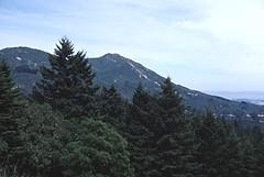 East Peak of Mount Tamalpais (birdgal5) Tags: california marincounty millvalley 35mmslide mounttamalpaisstatepark march1980 55mmf35micropc nikkormatel mounttamalpaissp eastpeakofmounttamalpais